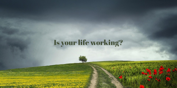 Is Your Life Working?