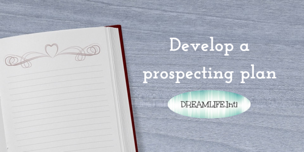 develop a prospecting plan