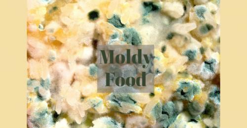 Moldy Food